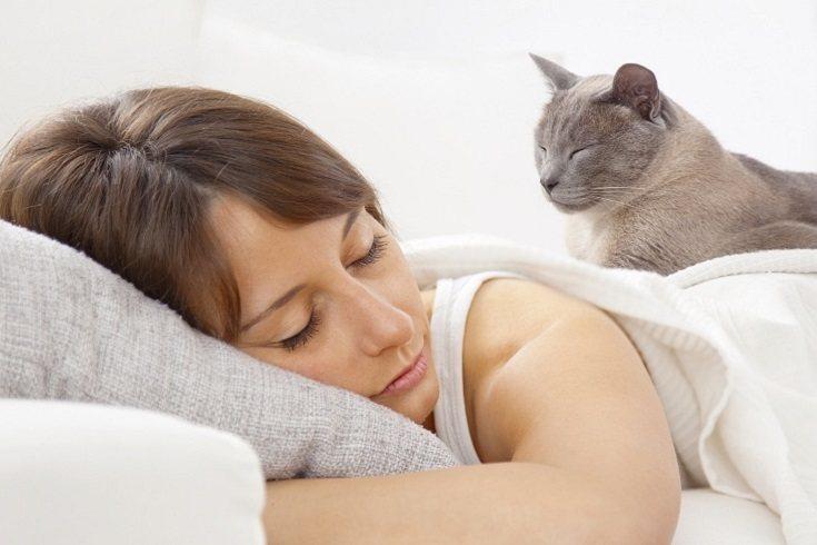 Recuerda que el animal también sufre los efectos del confinamiento
