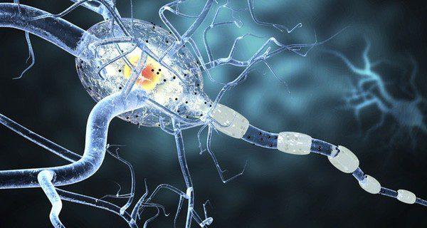 Se trata de un trastorno neurológico por un aumento brusco de la actividad neuronal en uno o varios puntos del cerebro