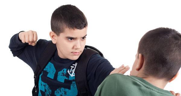 Desde que son pequeños debemos reprender cualquier acto violento de nuestro hijo