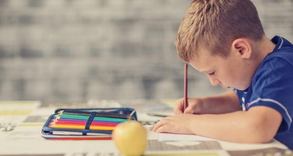 Los cuadernos de actividades están nivelados por cursos y edades