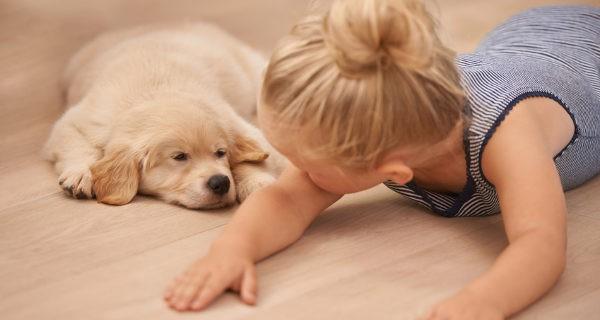 Los niños que se crian con animales tienen menos probabilidades de sufrir alergias y asma posteriormente