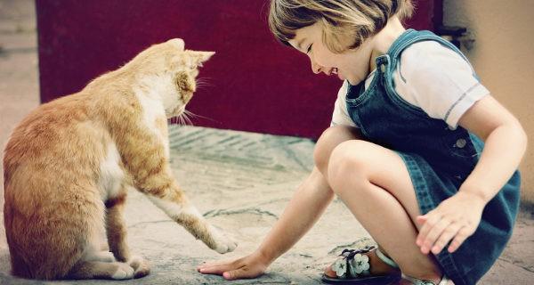 Una mascota puede ser un excelente compañero de aprendizajes
