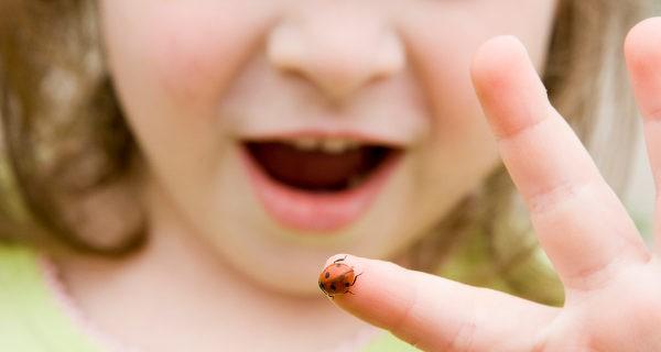 Si nosotros no mostramos miedo ante los animales, los niños tampoco lo harán
