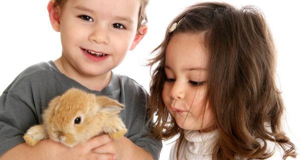 niños con un conejo de mascota