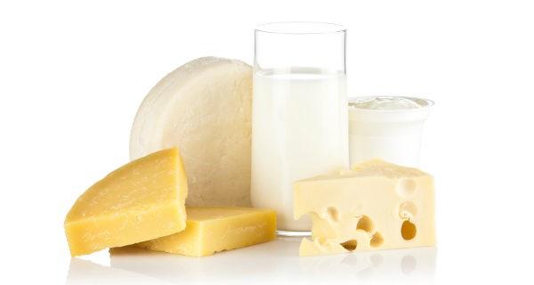 leche y sus derivados
