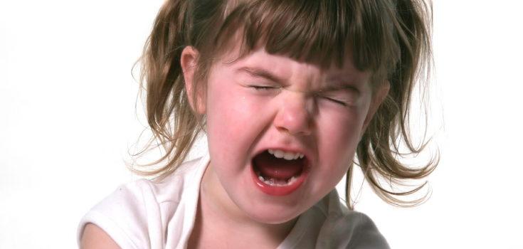 A partir de los 2 años los niños pasan de ser sumisos y fáciles de llevar a decir que no a todo