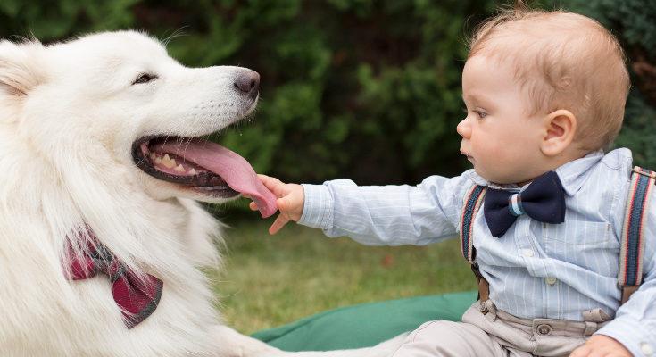 Desde pequeños lo sniños aprenden a cuidar de su mascota