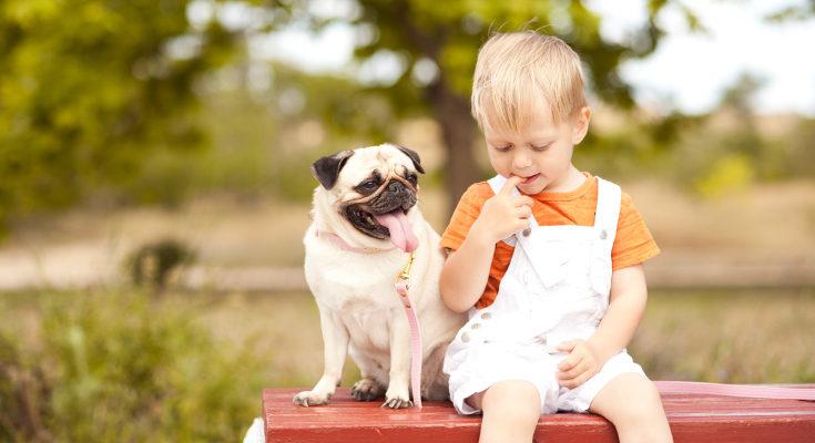 Crecer con perros en el hogar puede prevenir alergias y algunas afecciones respiratorios