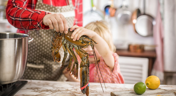 Es bueno esperar a darles marisco hasta los 2 años para prevenir reacciones alérgicas