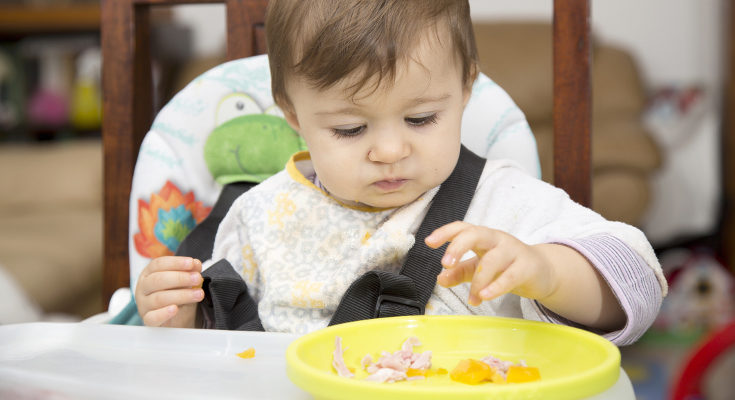 Las frutas, las verduras y la carne son alimentos que pueden empezar a comer con el baby-Led Weaning