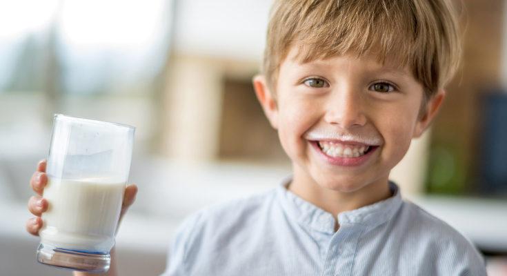 No debemos temer a las grasas de la leche, son igual de necesarias para el crecimiento infantil