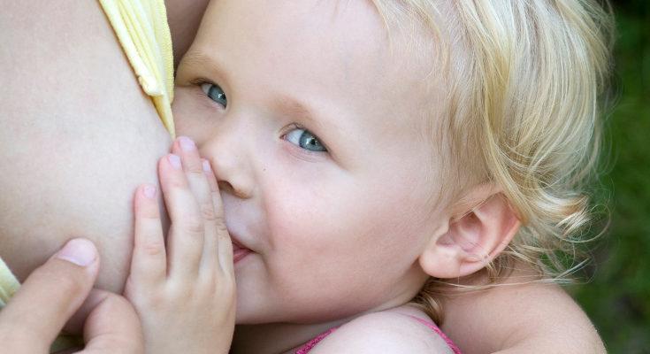 En ocasiones el hijo mayor puede rechazar el pecho a raíz de los cambios que produce el embarazo