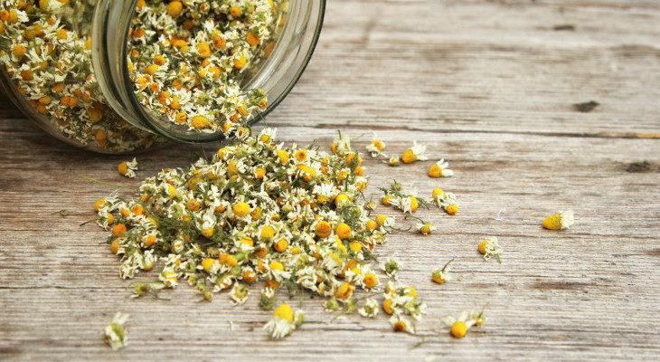 Las flores de manzanilla que nos sobren también nos sirven para hacernos una infusión