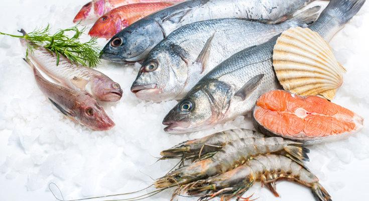 El anisakis se puede encontrar en el pescado y muere cuando se cocina o congela