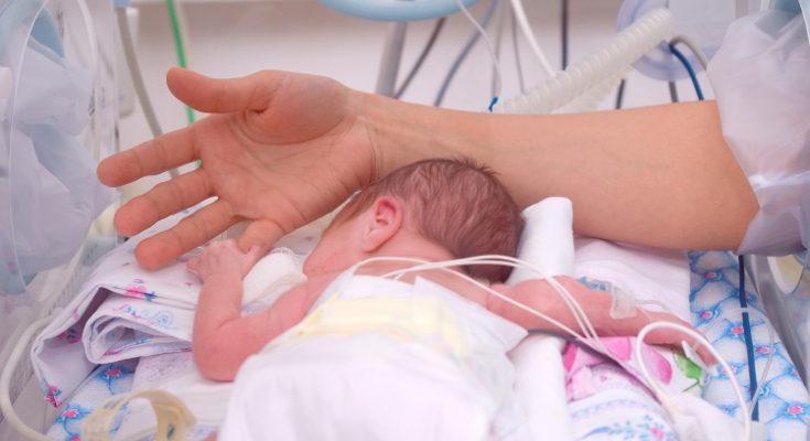 Los tentáculos recuerdan al bebé al cordón umbilical y se relaja