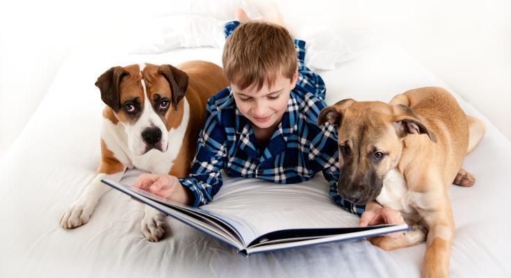 Leer un cuento o libro de noche les ayudará a dormir
