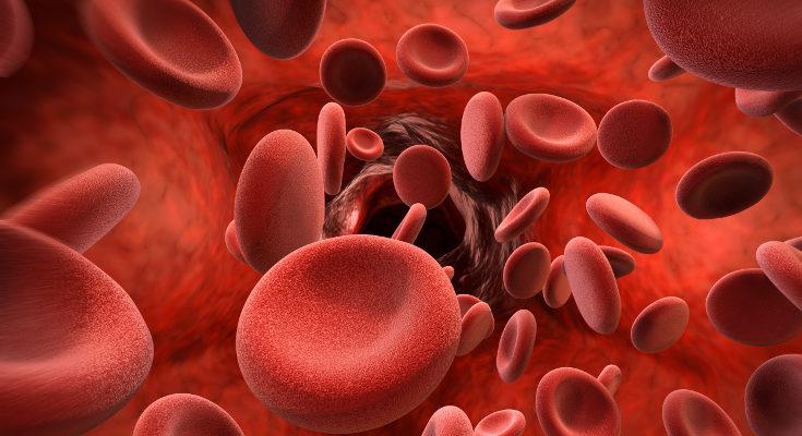 La bilirrubina aumenta en la sangre porque el hígado del bebé está aún desarrollándose