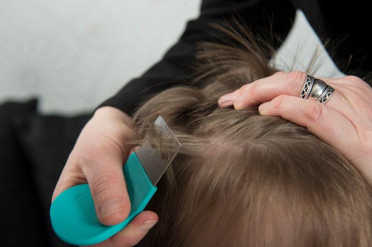 Nuestro hijo debe evitar compartir gorras o cepillos, y acercarse mucho al pelo de otros niños