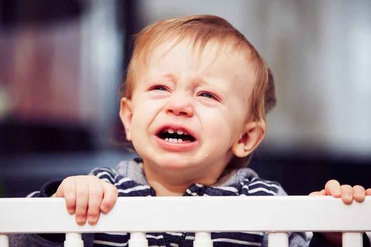 A los 2 años el niño empieza a frustrarse porque quiere ganar autonomía y es normal que tenga berrinches