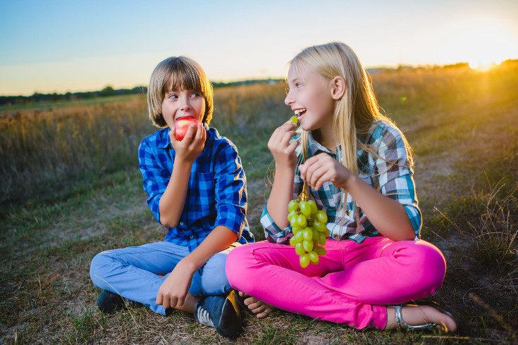 Las frutas de temporada son más sanas porque se dan en su época natural