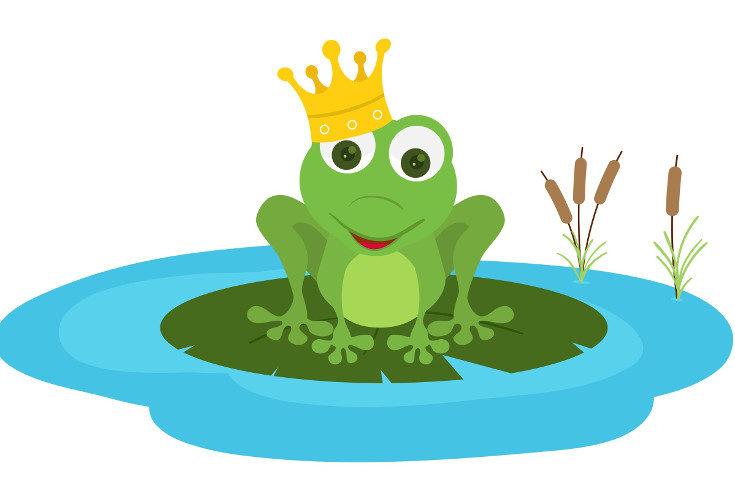 Las ranas que se convierten en príncipes no sólo besan chicas