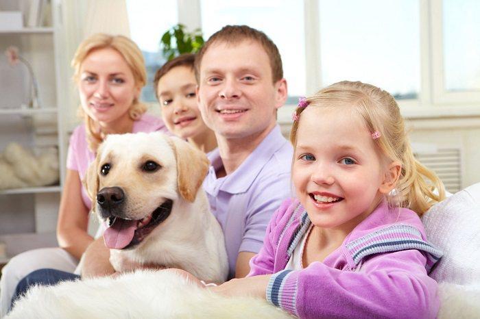 En nuestra sociedad son muchas personas alérgicas a gatos y perros