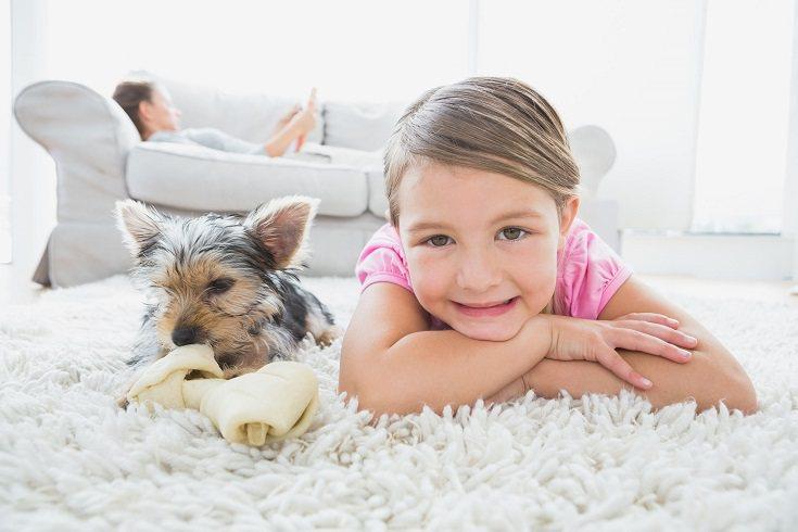 El tiempo libre es imprescindible para poder tener una nueva mascota en el hogar