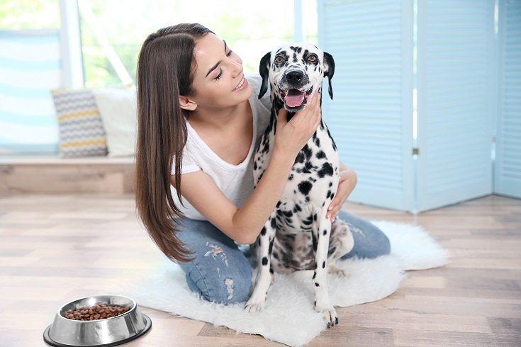Los perros son excelentes mascotas para familias con niños de todas las edades