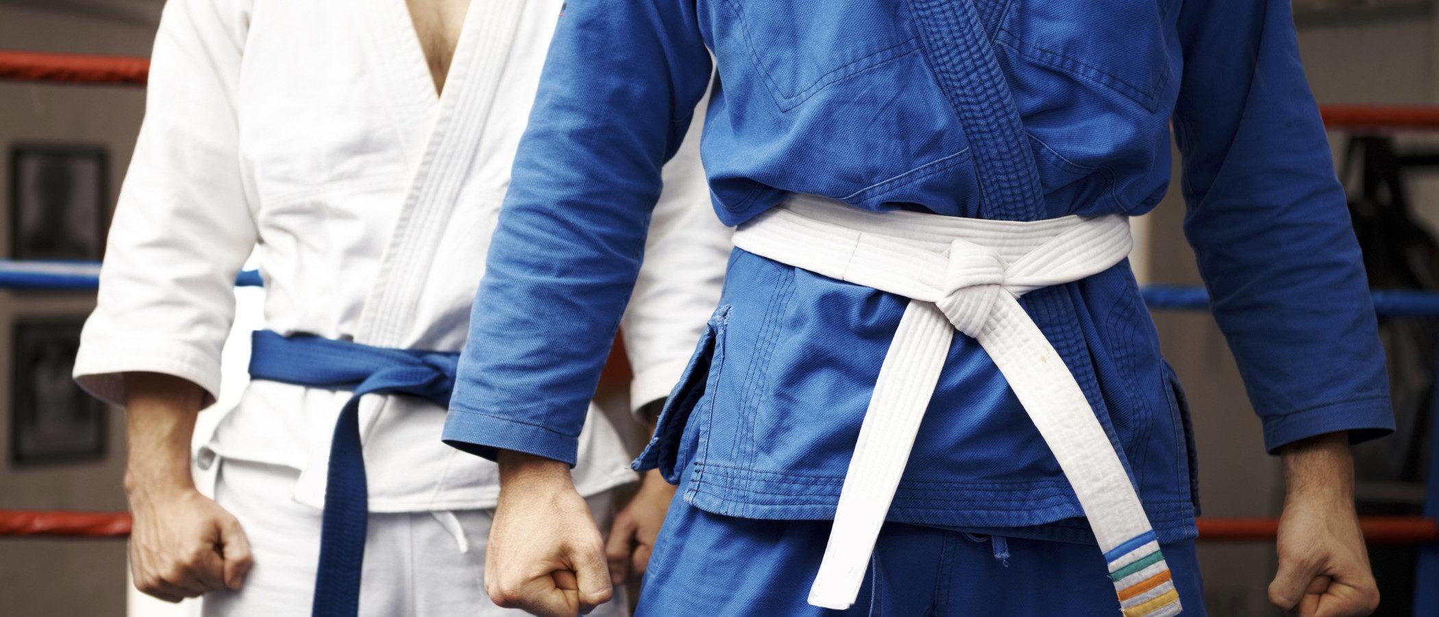 Actividades extraescolares: judo, kárate y taekwondo