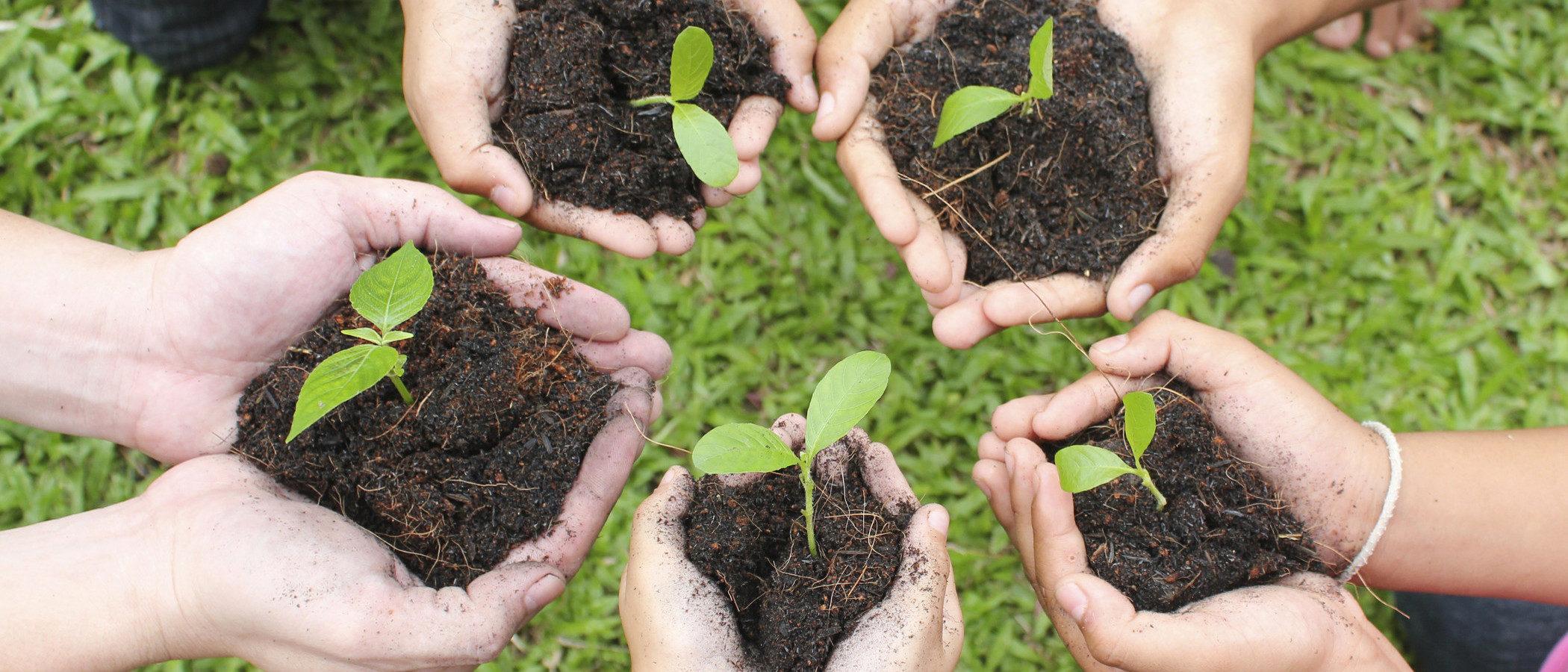 Enseña a tus hijos a cuidar del medio ambiente