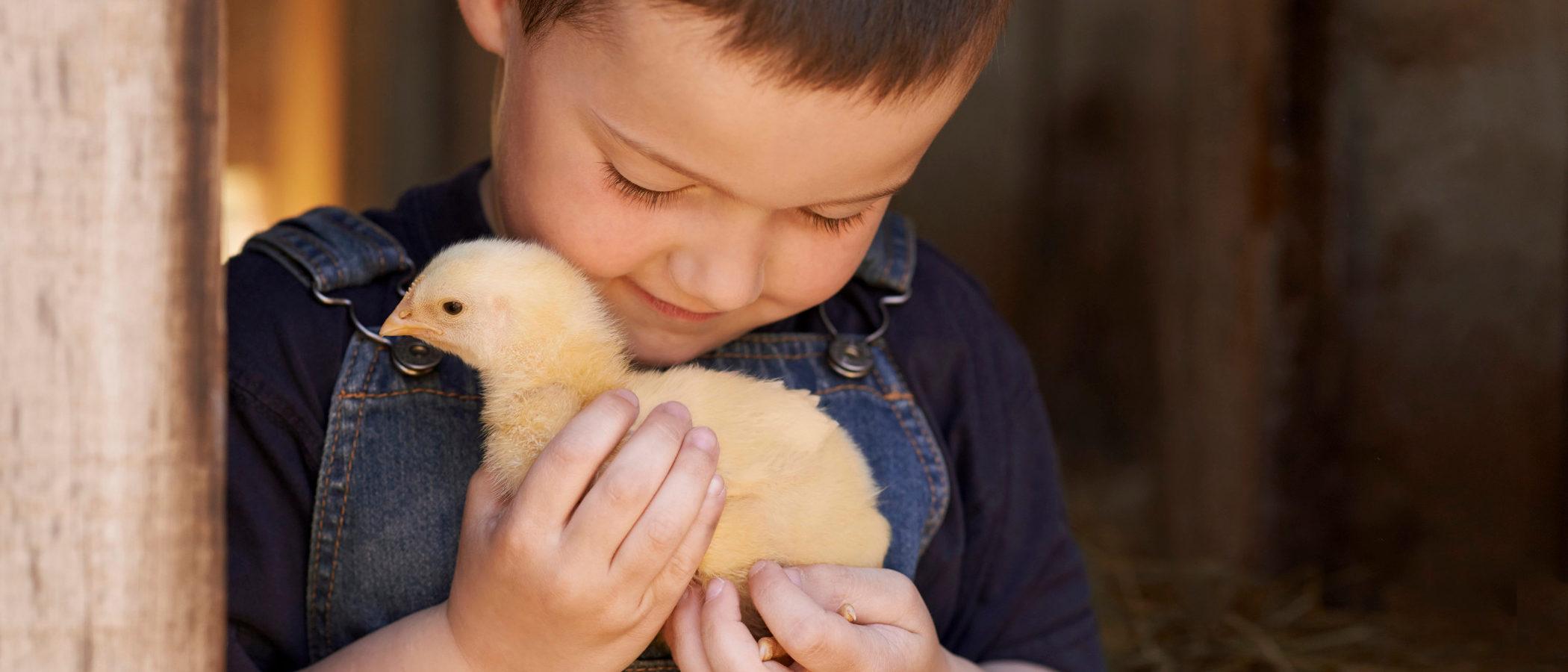 Cómo inculcar en los niños el respeto por los animales