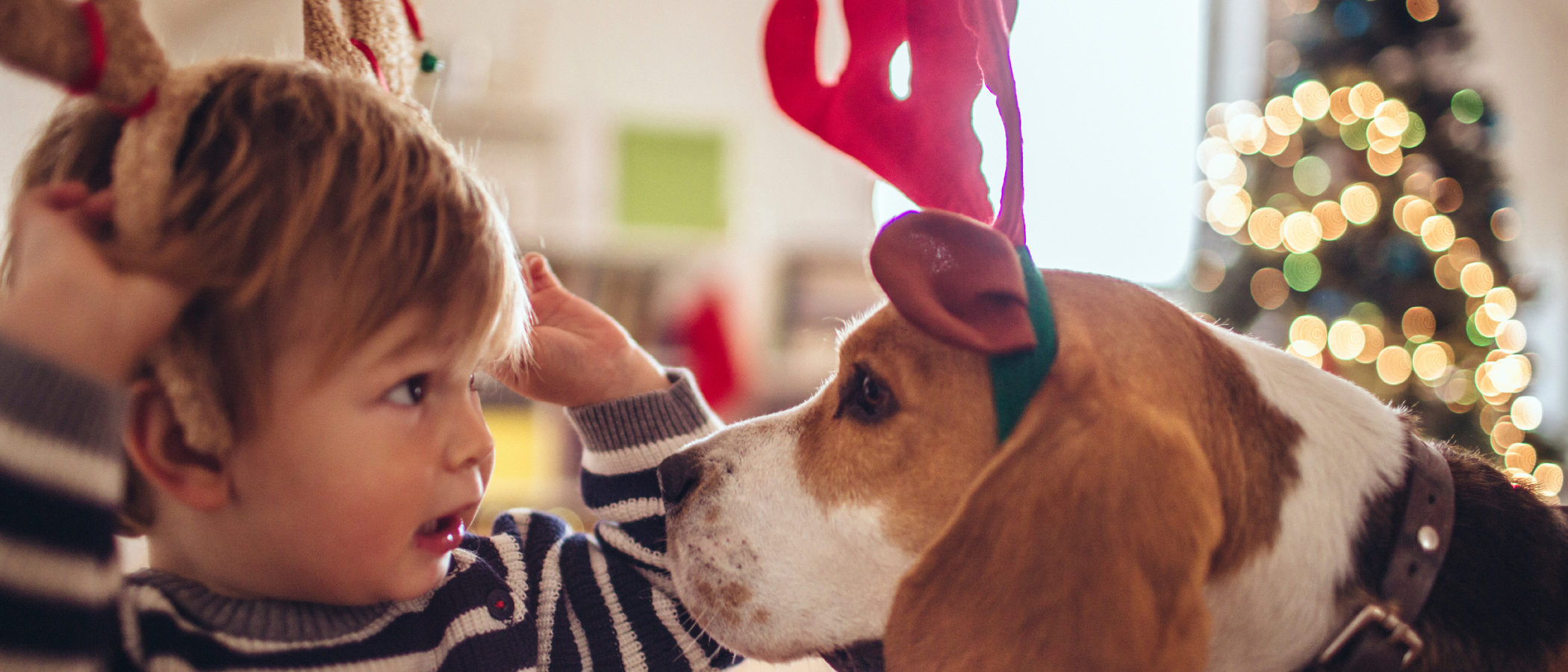 10 películas navideñas para ver con niños