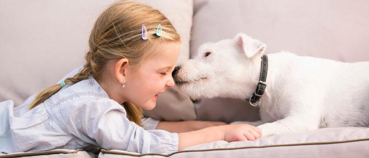 Las mascotas ideales para tener con niños en casa