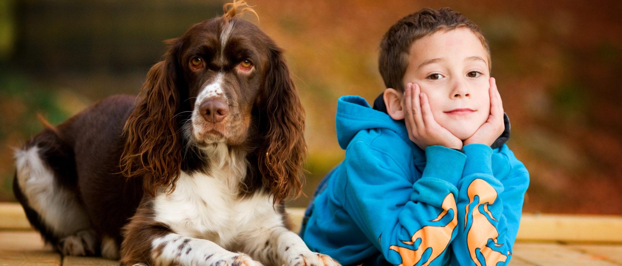 Recomendaciones para adoptar un perro para un niño