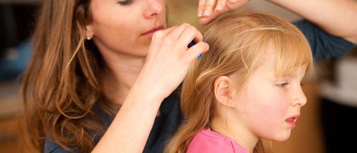 ¿Puede ir un niño al colegio si tiene piojos?