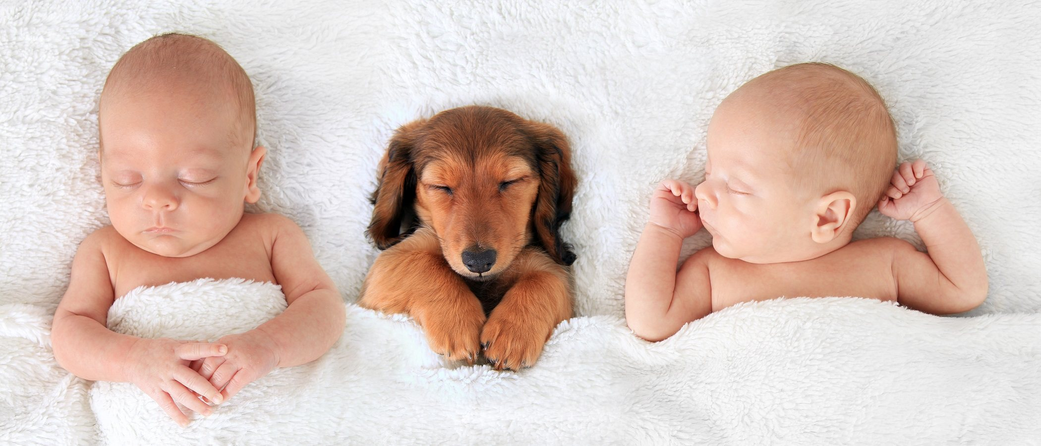 Riesgos de un embarazo de gemelos para la madre