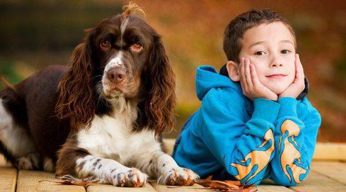 Recomendaciones para comprar un perro a un niño