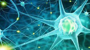 ¿Afecta la epilepsia al desarrollo de los niños?
