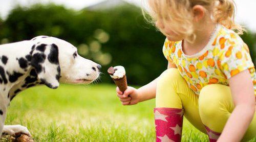 La convivencia con perros teniendo hijos pequeños