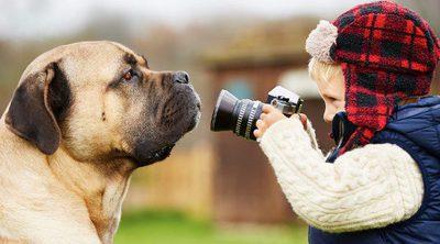 Ventajas de adoptar un perro grande si tenemos niños pequeños