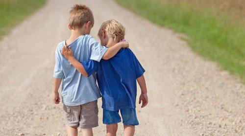 ¿Debería tener otro hijo para que acompañe al otro en la vida?