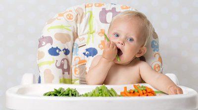 Alimentos recomendados para empezar a dar sólidos en el Baby-Led Weaning