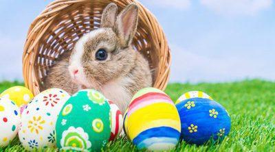 La historia del conejo de Pascua