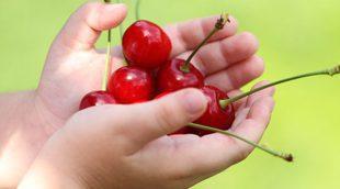 Las frutas de temporada más recomendadas para niños en verano