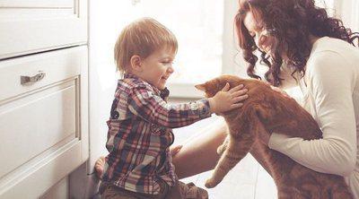Los gatos son buenos para la salud familiar