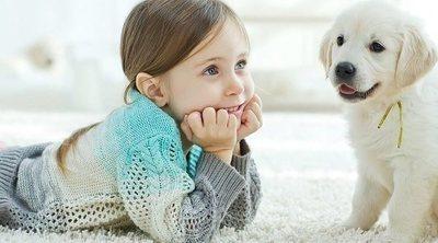 Cómo conseguir que los niños muestren empatía con los animales