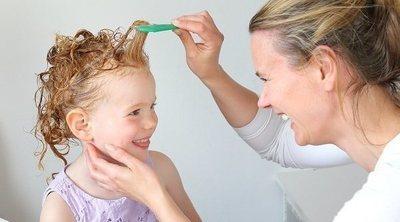 Piojos: cómo reconocer que tu hijo tiene liendres