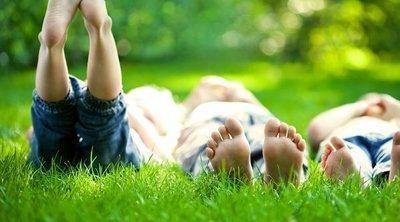 Beneficios de tener un jardín familiar