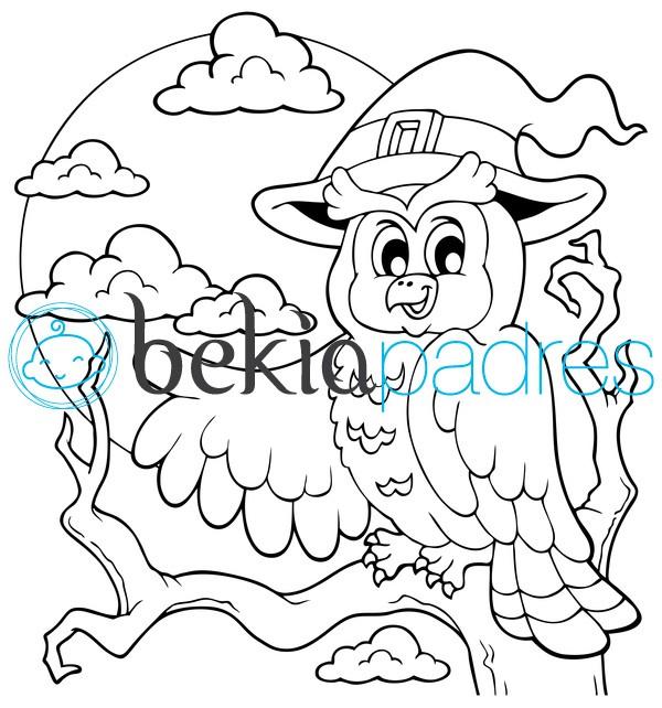 Búho con gorro de bruja: dibujo para colorear