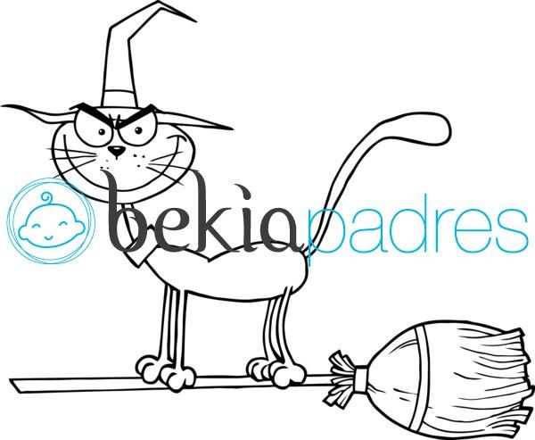 Gato sobre una escoba para colorear